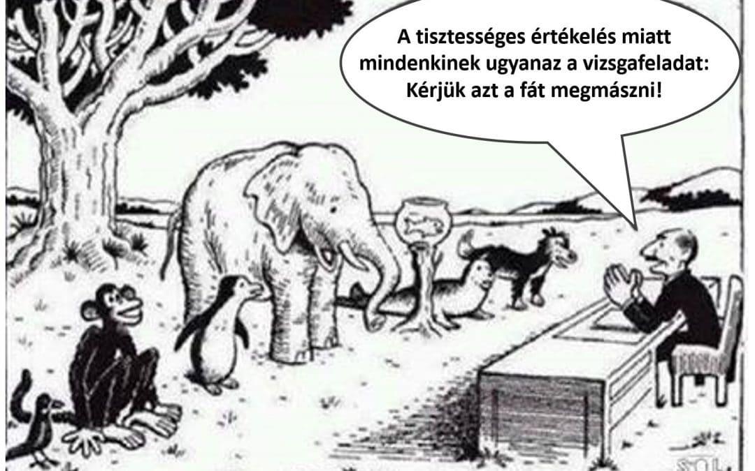 Rossz tanuló a gyerek, vagy aranyhal a fán?